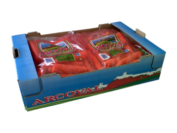 Best quality carrots of Spain, Arcoval SL